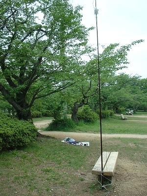 Moriyama1