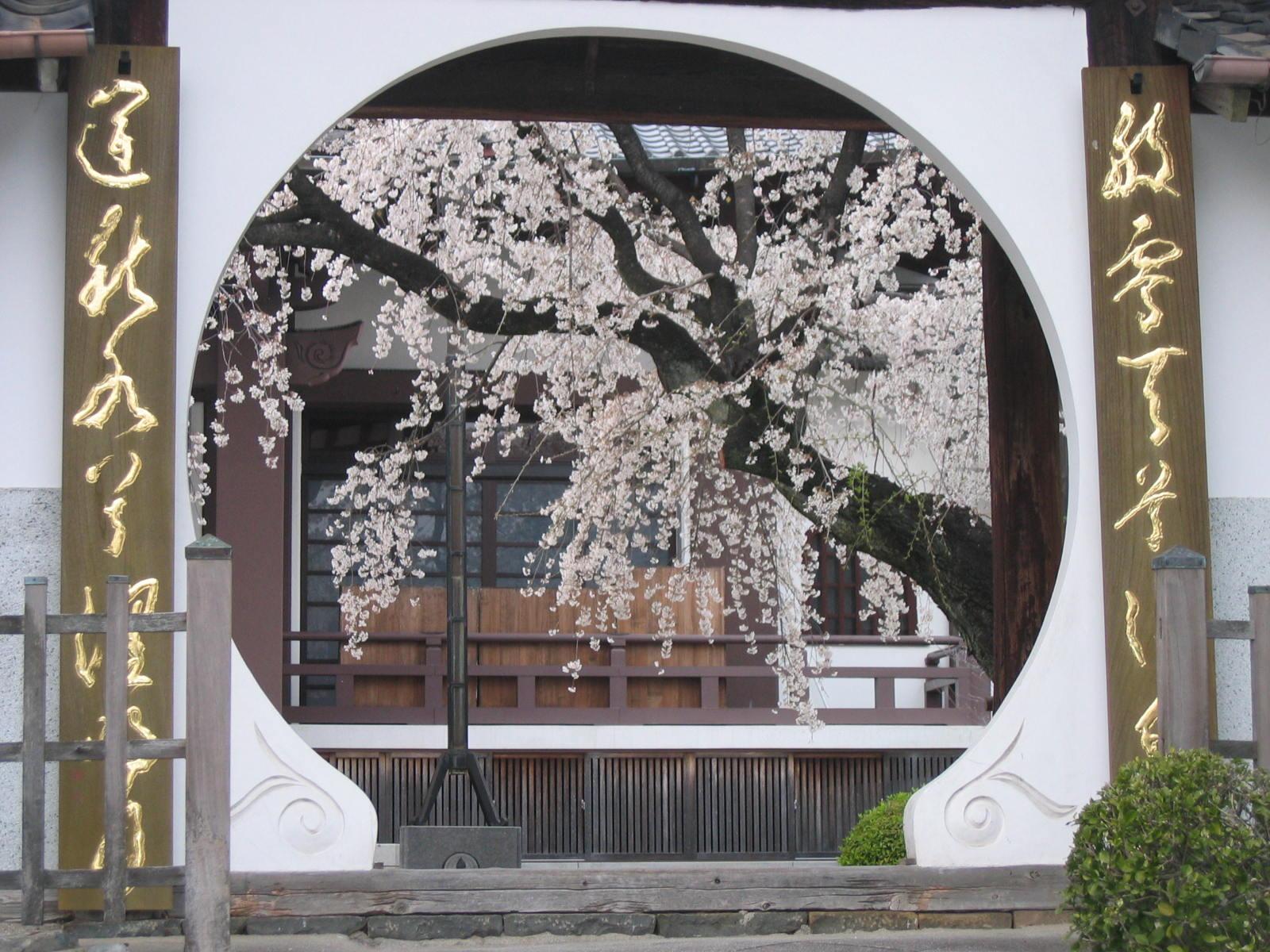 Koujyakuin1