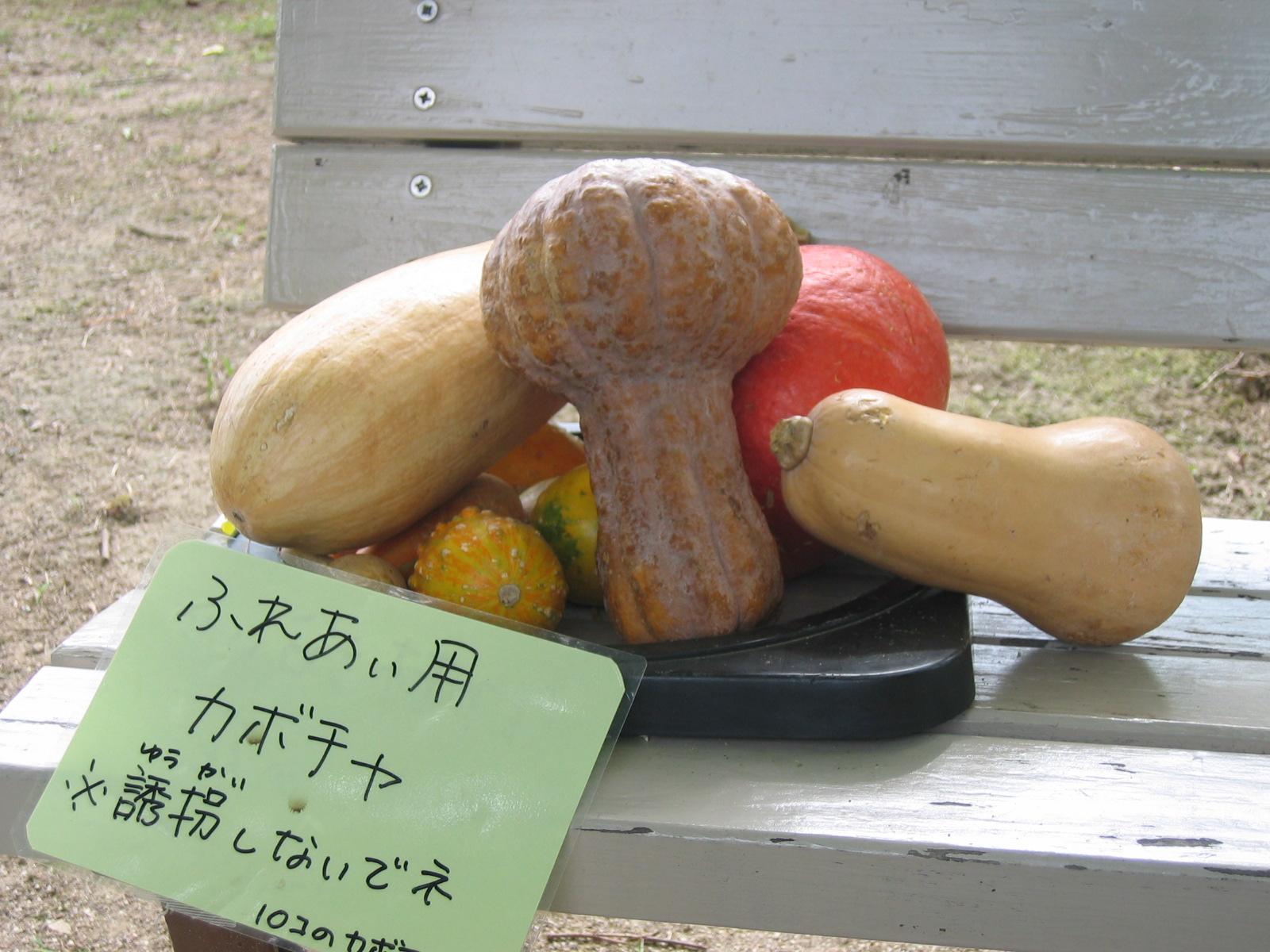 Sanpo_005